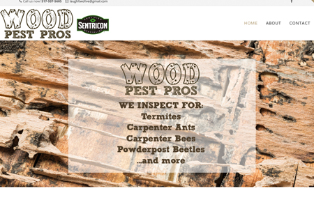 website design for wood pest pros